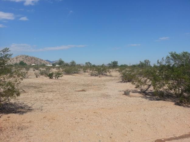 View 1 off Olivine