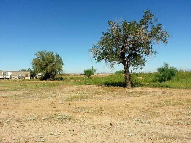 Mariposa Land 1