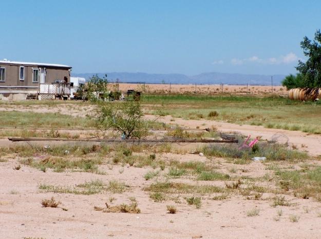 Mariposa Land 3