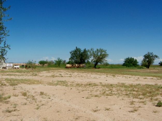 Mariposa Land 4